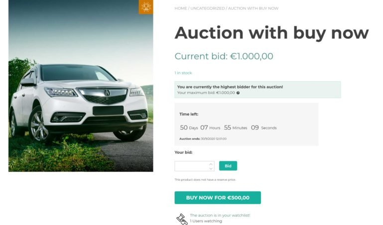 Auction with buy now option