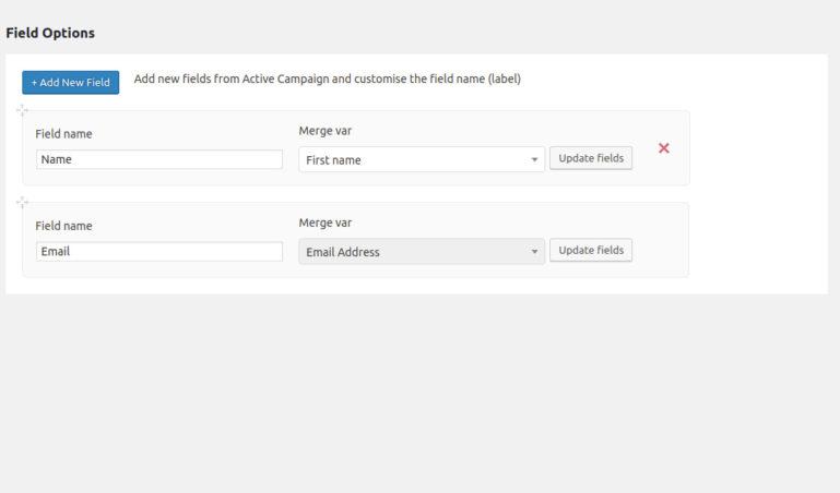 Set fields for widget subscription form