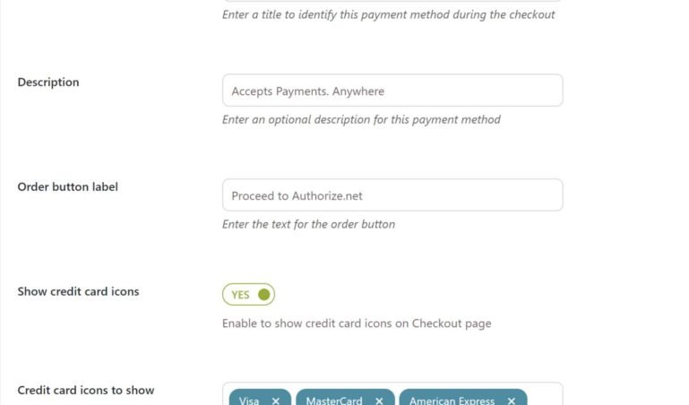 Credit card payment settings - Customization