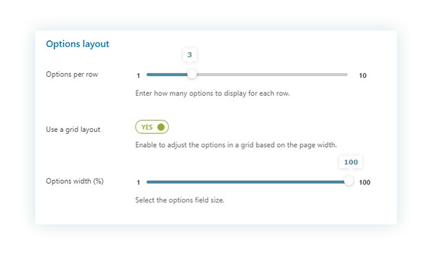 Options layout from the Display settings